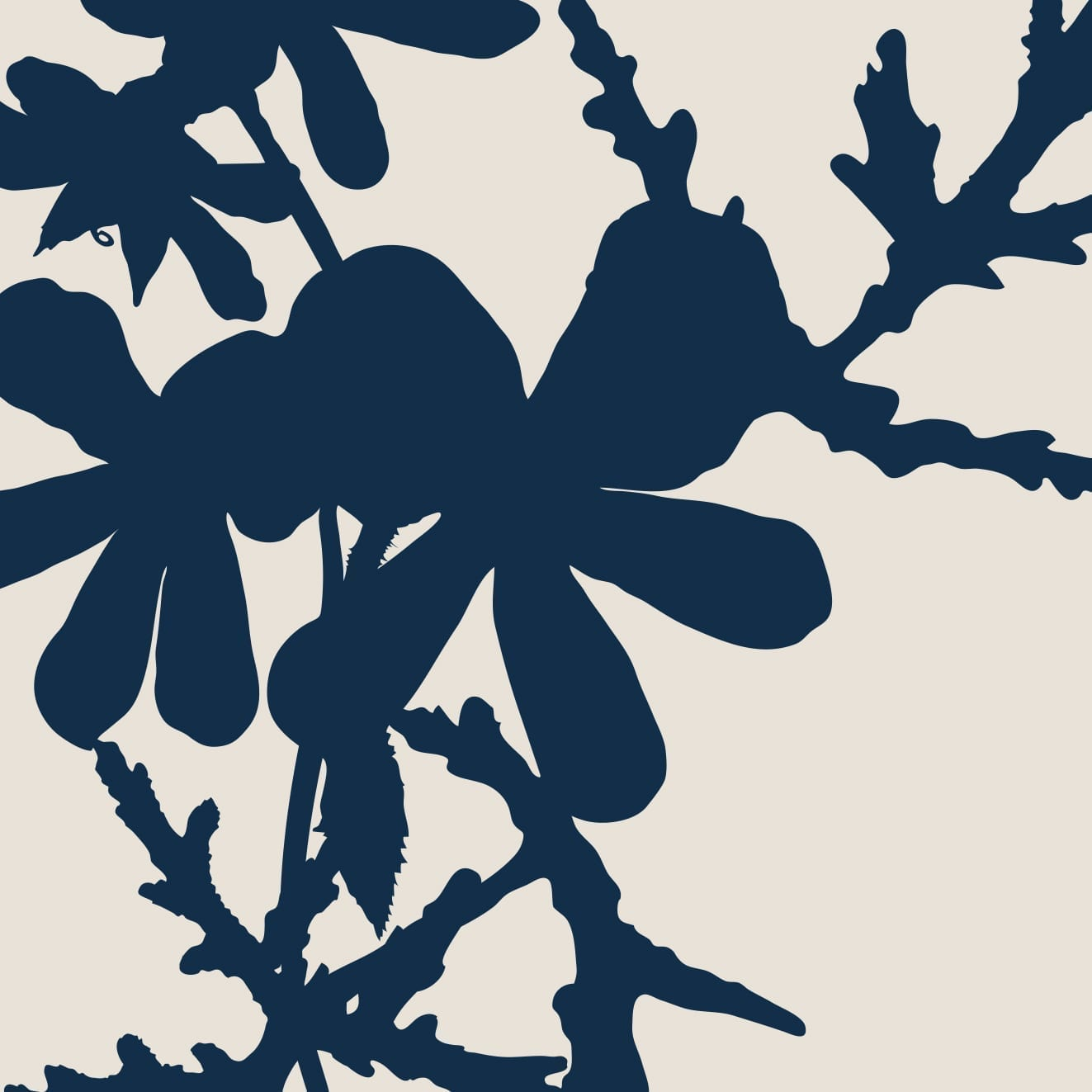 A cropped graphic of the Geranium used on the mature skin products for Four Tattoo Care